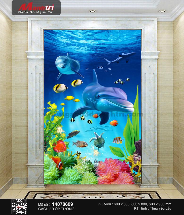 Cá heo bên dải san hô