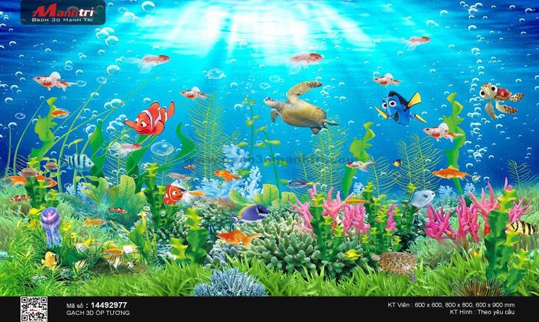 Đại dương đa sắc màu