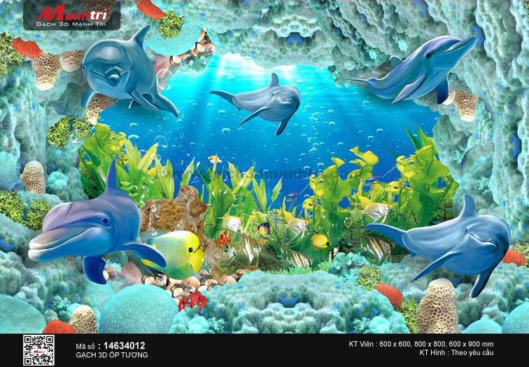Đàn cá heo trong lòng biển huyền bí