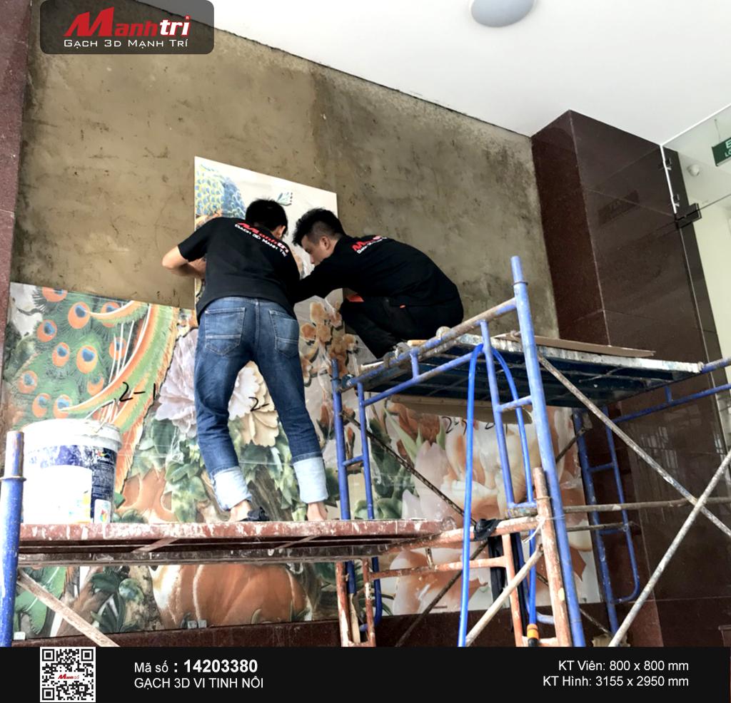 gach 3d chim cong