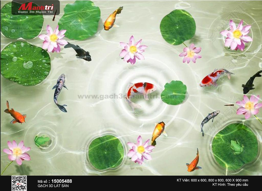 Cá chép trong hồ sen gợn sóng