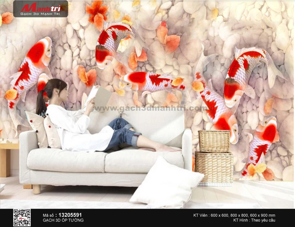 Cửu ngư sắc đỏ nền sỏi trắng