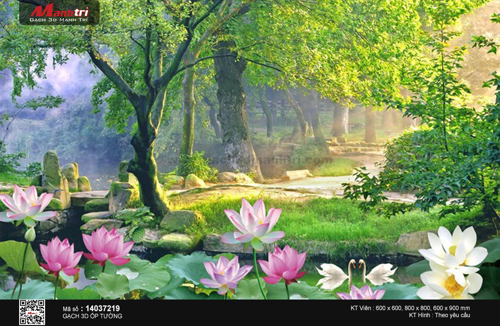 Hồ sen trong rừng xanh