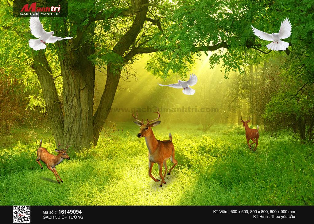 Cảnh rừng xanh yên bình