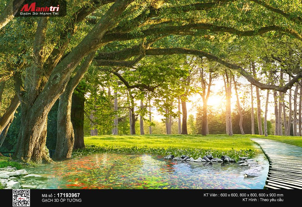 Đàn cá chép quây quần dưới bóng cây