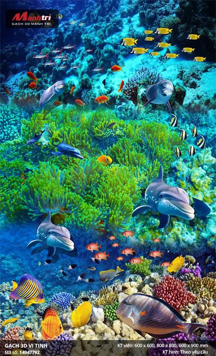 Đàn cá bên dải san hô