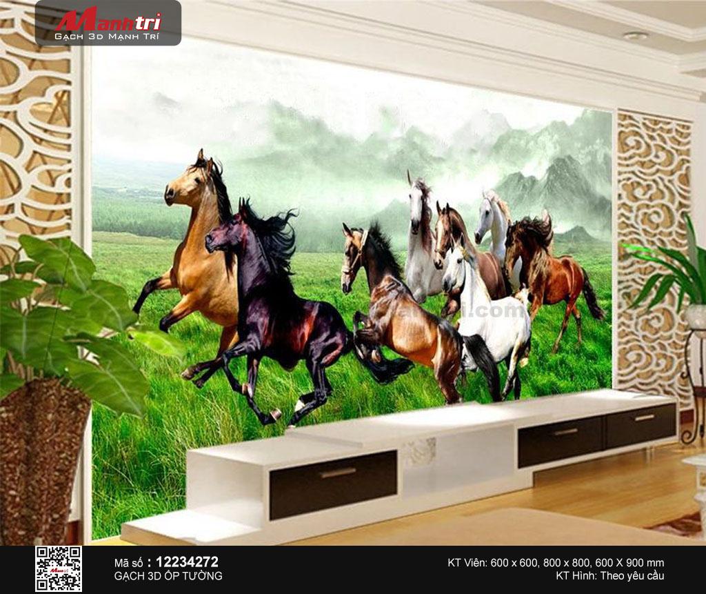 Đàn ngựa trên đồng cỏ lộng gió