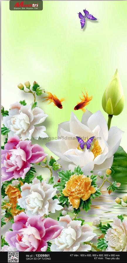 Hoa sen cùng mẫu đơn khoe sắc