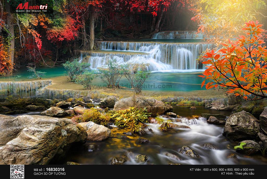 Suối giữa khu rừng lá đỏ