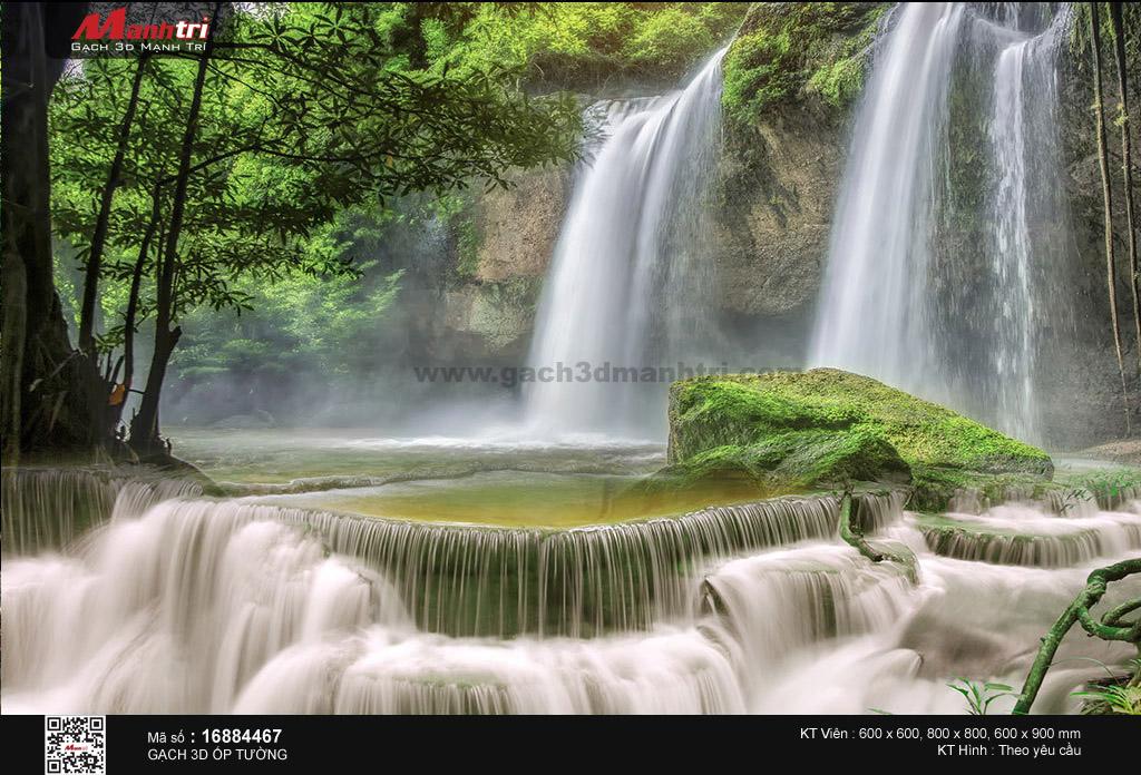 Cổ thụ bên dòng thác đổ