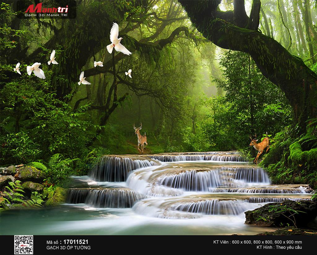 Dòng suối hoang sơ trong khu rừng già