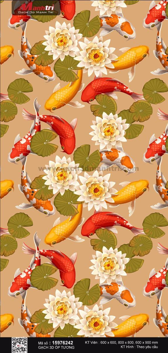 Cá chép bên hoa sen trắng